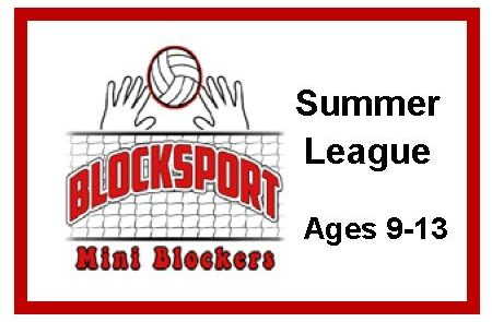 Summer League Image 2