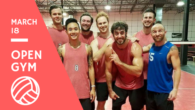 blocksport volleyball open gym